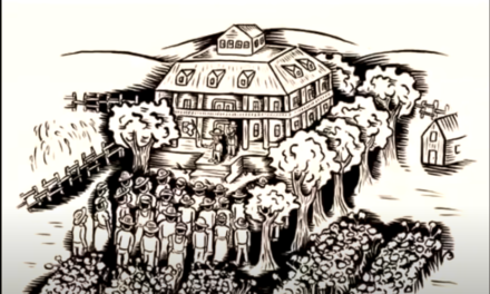 La piantagione del Signor Jones